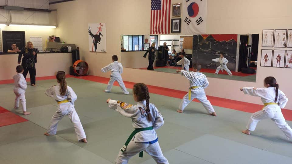 The Martial Instinct Self-Defense Gallery Photo Number 2